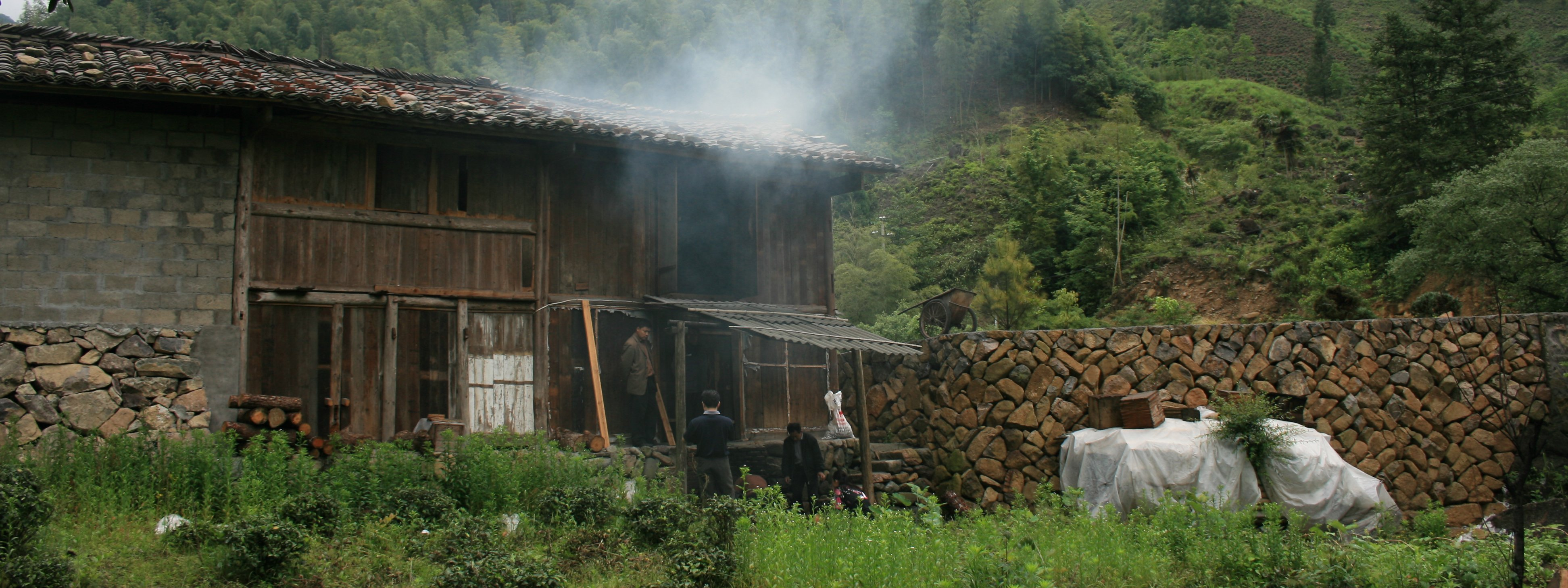 Tea-Garden_Bohea-Lapsang-Smoke-House_Wuyi_China