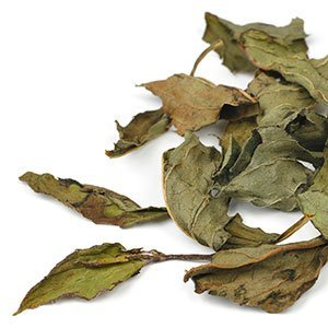 Peppermint Leaf Loose Tea