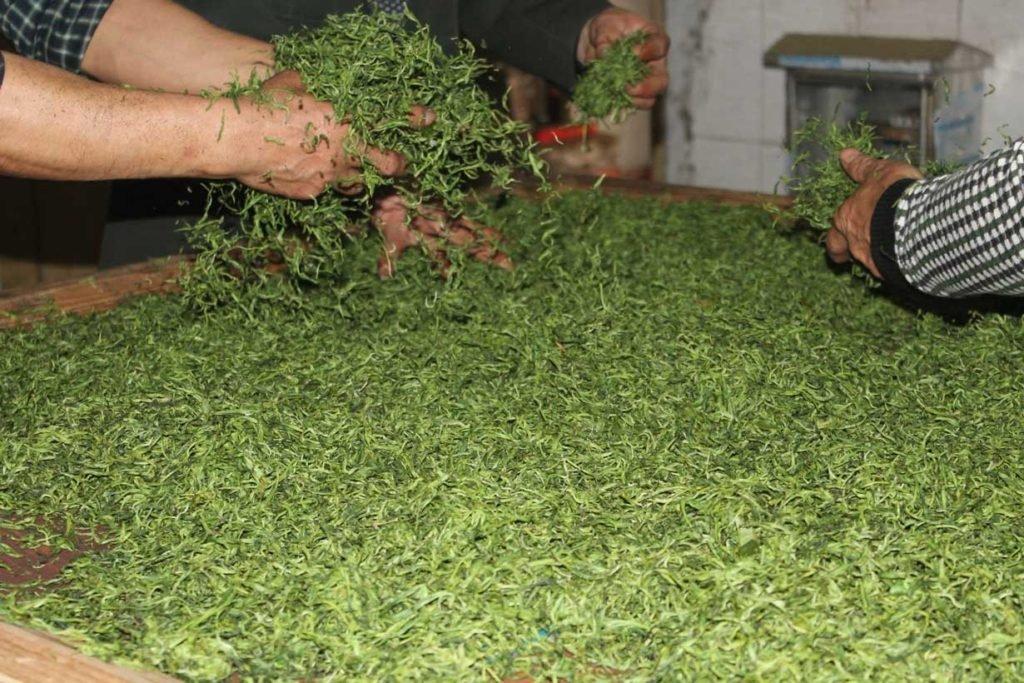 hunan-silver-peak-loose-tea-tea-factory_blog_3