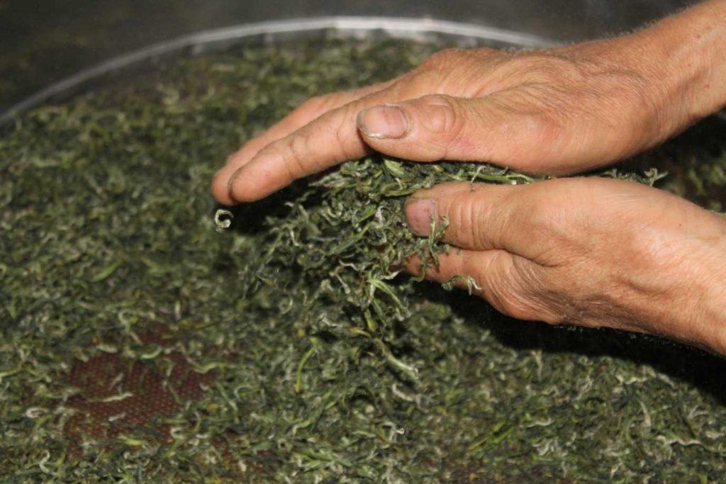 hunan-silver-peak-loose-tea-tea-factory_blog_4