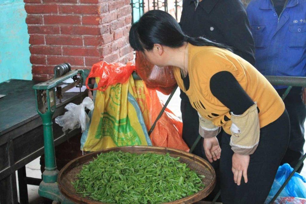 hunan-silver-peak-loose-tea-tea-factory_blog_5