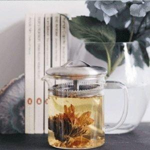 Tea Drinking Companion