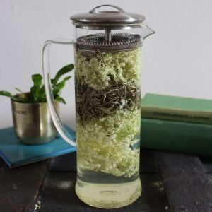 Cold infused tea with elderflower