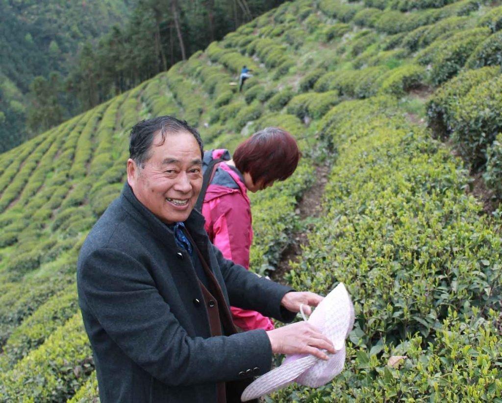 Mr Lu Tea Master