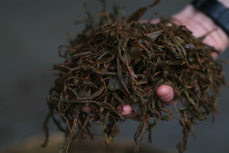 Organic Bohea Lapsang
