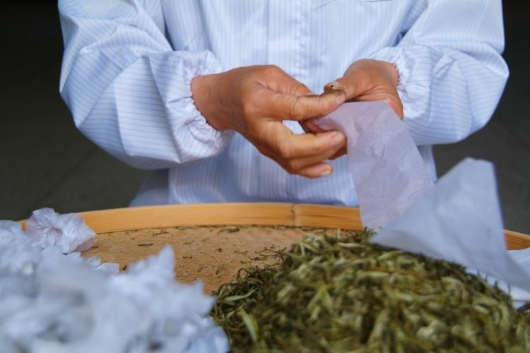 Green tea leaves are tightly rolled into cotton cloth to dry and form the perfect pearl shape, which can then be scented