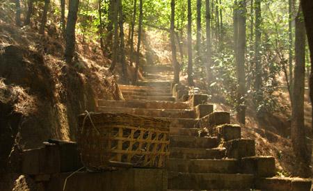 Yunnan Path