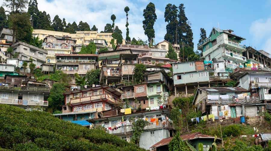 Houses-above-a-tea-plantation-in-Darjeeling,-India