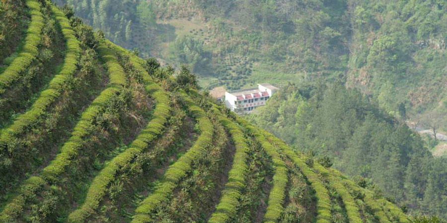 Hunan-province,-China2