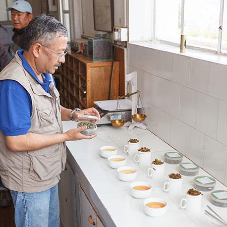 Sen, Badamtam Garden Manager tasting his First Flushes