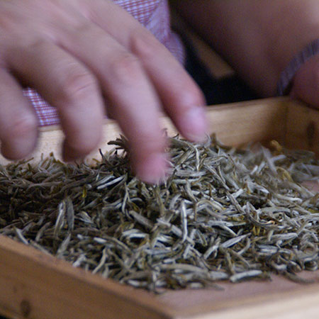 After five nights of scenting, the finished tea is full of authentic and lasting jasmine fragrance.