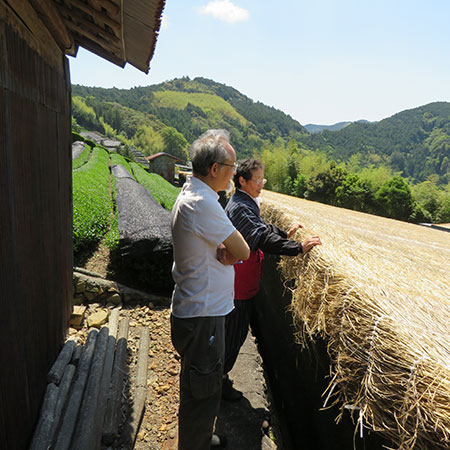 The Miyazakis overlooking the garden - the bushes are being shaded using rice straw netting.