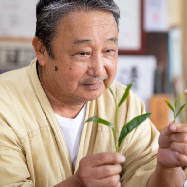 Producer Ishiyama inspects the Spring pick from his Sencha tea garden.