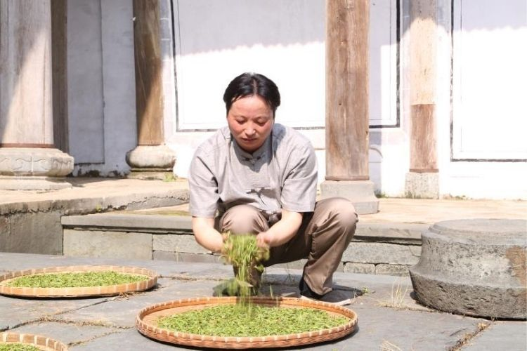 Fresh leaves are withered in the sun over the watchful eye of producer Mr Wang to create Keemun.