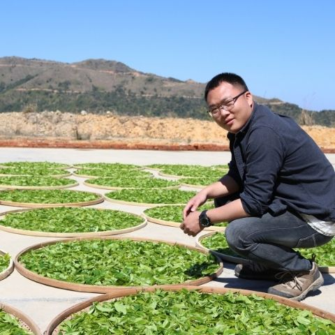Drinking loose tea opens up access to distinctive single garden teas from master craftsmen such as Yong Lou, who's Phoenix Honey Orchid tea we discovered in 2019.