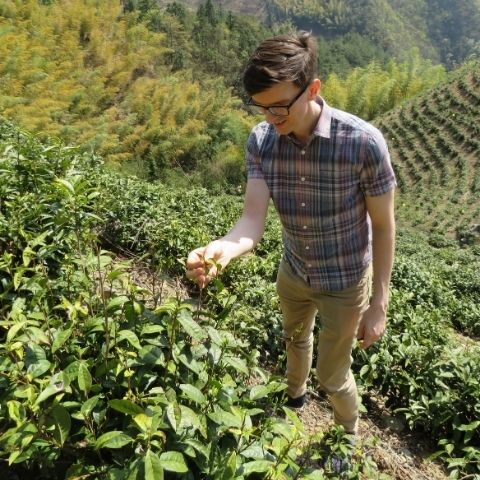 Tom in Wen's organic tea garden (Yong'an) in 2019, which is in the remote northwest of Chun'an county in Zhejiang province.
