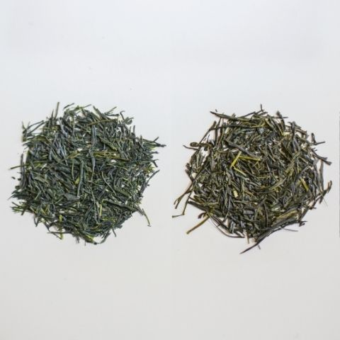 In this piece we review two similar looking Japanese green teas, Gyokuro (left) and Sencha (right), to understand the key differences and what they taste like.