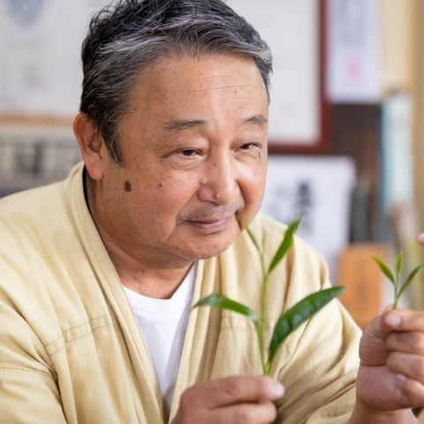 Ishiyama looking at the differences between a young bud and shoot picking and an older leaf picking.