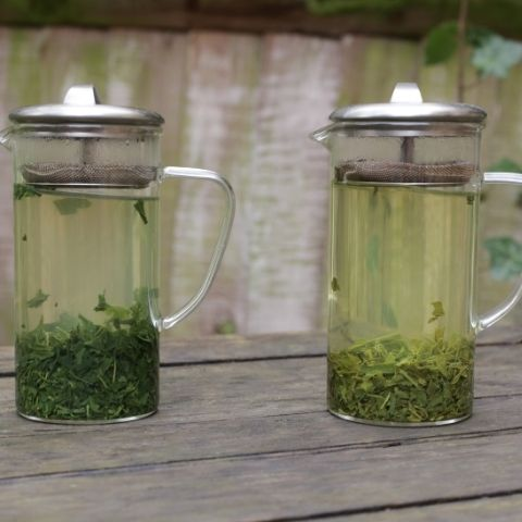 When comparing the taste of these teas, you'll find Sencha (right) has plenty of grassiness & floral sweetness, whereas Gyokuro (left) is richer & more intense.