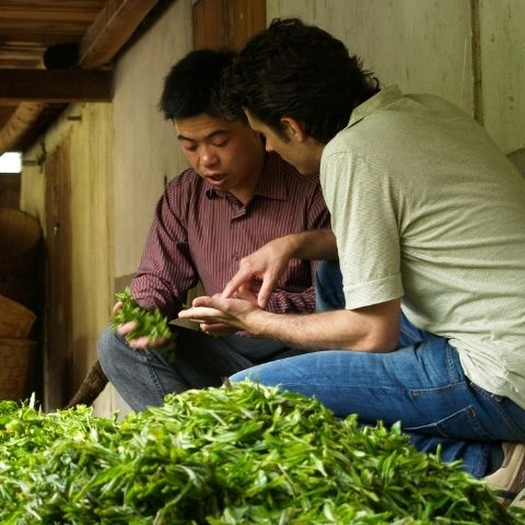 Ed started JING because he wanted to share his experience of being in the tea gardens, among wildlife and nature, learning from the masters that made these great teas.