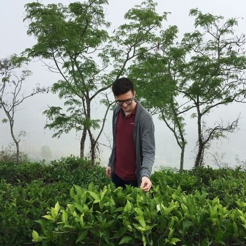 Tom in the gardens in 2018. He's always looking for clarity of flavour & tea that encapsulates the specific character of the place it's been grown.