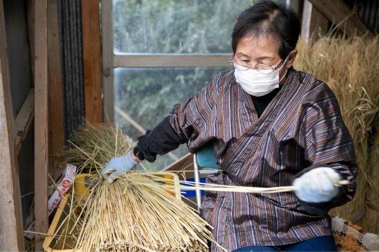 Mrs Miyazaki is one of only 3 people in Asahina valley still weaving traditional rice straw canopys for shading her gyokuro tea.