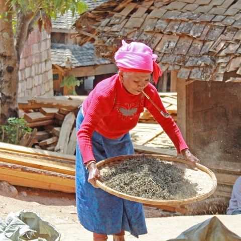 Yunnan one of the most ethnically diverse provinces of China, with ethnic minorities accounting for about 34% of its total population.
