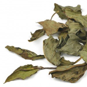 Peppermint Leaf Loose Tea