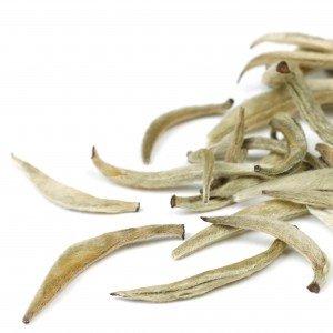 silver-needle_loose-tea_chinese-teaLP