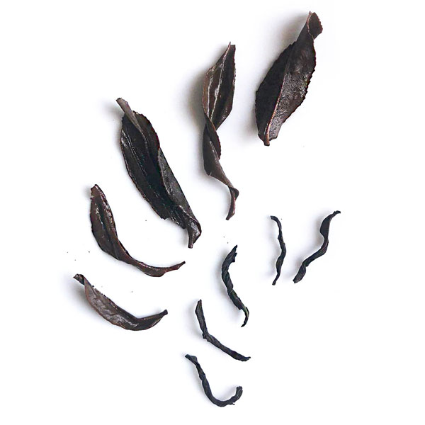Wet-and-Dry-leaf-examples-from-Red-Dragon---notice-the-unusually-large-size-for-a-black-tea
