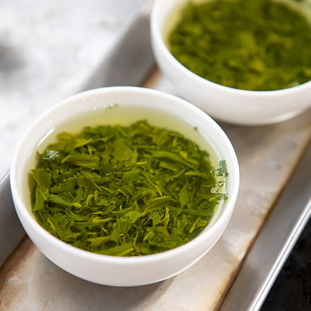 Fresh Gyokuro being taste tested for that all important umami richness.