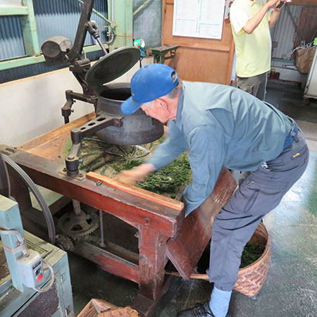 Mr Miyazaki rolls the leaves after steaming to ensure an even drying and deep flavour.